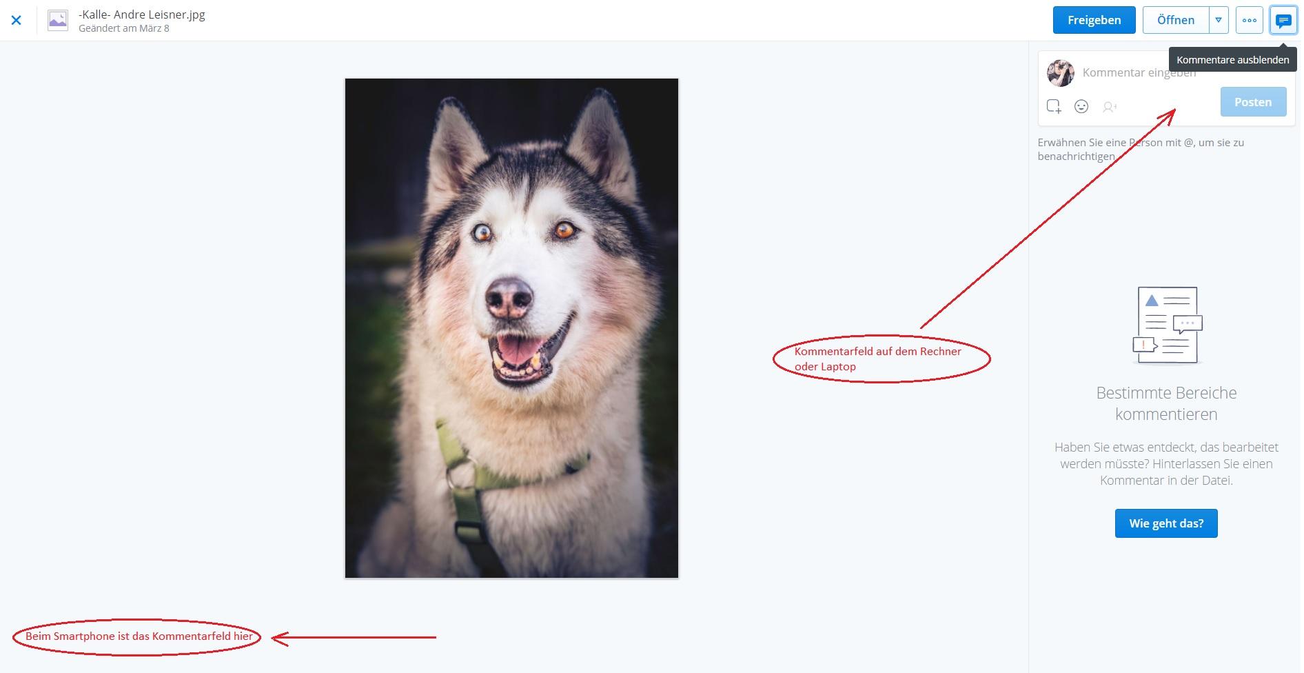 Kundenauswahl Bilder Dropbox