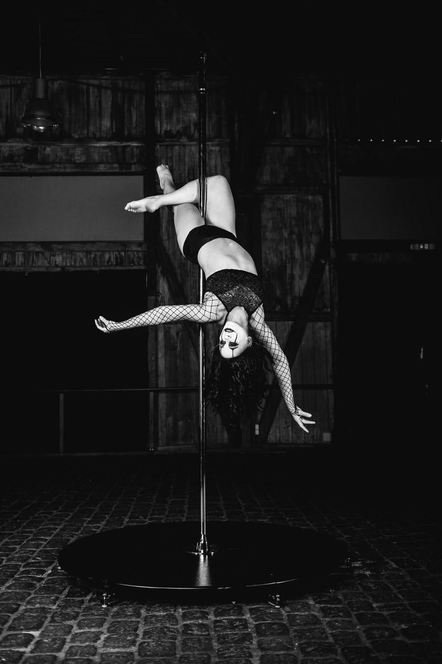 Die Pole Dance Stange